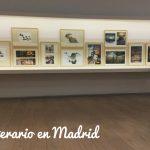 Planes literarios con niños por Madrid